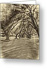 Into The Deep South - Paint 2 Sepia Greeting Card