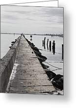 Into The Gulf Greeting Card