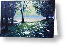 Into The Light   Cropped Version Greeting Card by John  Nolan