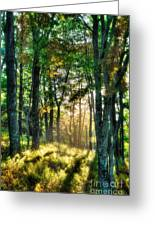 Into The Light II - Blue Ridge Parkway Greeting Card