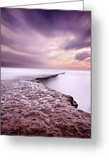 Into The Ocean Greeting Card by Jorge Maia