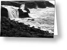 Into The Sea Greeting Card