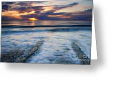 Into The Sea Greeting Card by Mike  Dawson