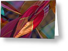 Into The Soul Greeting Card
