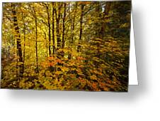Into The Woods We Go  Greeting Card