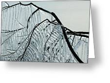 Intricate Ice Curtains Greeting Card
