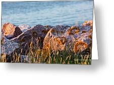 Inverness Beach Rocks  Greeting Card