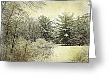Invitation To Winter  Greeting Card by Dianne  Lacourciere