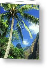 Io Valley Palm And Needle Maui Hawaii Greeting Card