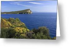 Ionian Sea Coast Albania Greeting Card