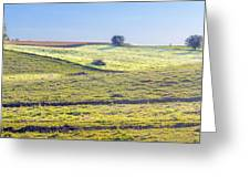 Iowa Farm Land #1 Greeting Card