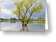 Iowa Flood Plains Greeting Card