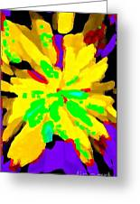 Iphone Cases Colorful Flowers Abstract Roses Gardenias Tiger Lily Florals Carole Spandau Cbs Art 182 Greeting Card