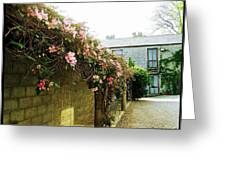 Ireland Floral Vine-topped Brick Wall Greeting Card
