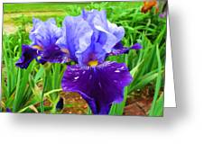 Iris #36 Greeting Card