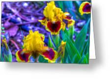 Iris #58 Greeting Card