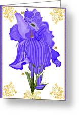 Iris And Old Lace Greeting Card