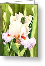 Iris Flower Dancing Petals Greeting Card