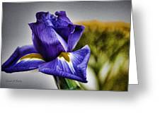 Iris Flower Macro Greeting Card