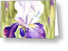 Iris Flower Purple Dance Greeting Card