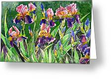 Iris Inspiration Greeting Card