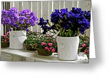 Irises And Impatiens Greeting Card