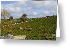 Irish Farms And Fields Greeting Card