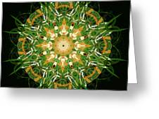 Irish Influence 3 Greeting Card