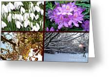 Irish Seasons Greeting Card