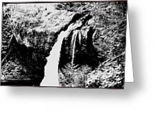Iron Creek Falls Bw Greeting Card