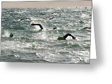 Ironman 2012 Sheer Determination Greeting Card by Bob Christopher