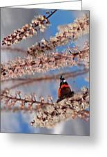 Irresistible Blossom Greeting Card