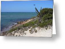 Isla Cubagua  Greeting Card