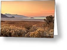 Island Daybreak Greeting Card