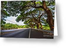 Island Drive  Greeting Card