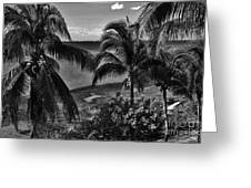 Island Girls Greeting Card