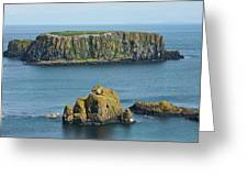 Island Off The Coast Near Ballintoy Greeting Card