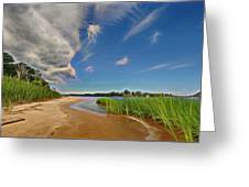Island Shore Greeting Card