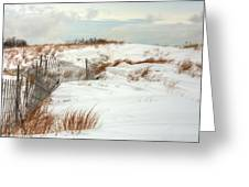 Island Snow Greeting Card by JC Findley