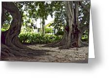 Island Style Living Greeting Card