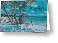 Island Time Greeting Card