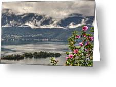 Islands And Flowers Greeting Card