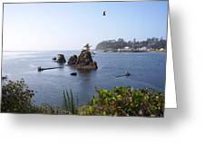 Islands On The  Coast Greeting Card by Yvette Pichette