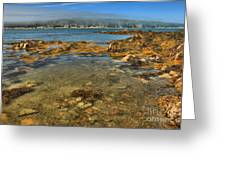 Isle Au Haut Beach Greeting Card by Adam Jewell