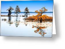 Isle Of Peace - North Carolina Greeting Card