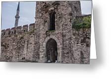 Istanbul City Wall 05 Greeting Card