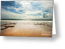 It Was A Sunny Day At The Beach From The Book My Ocean Greeting Card