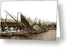 Italian Fishing Boats Fishermen's Wharf San Francisco Circa 1903 Greeting Card