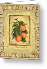 Italian Fruit Apricots Greeting Card