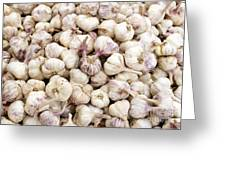 Italian Garlic Bulbs Greeting Card